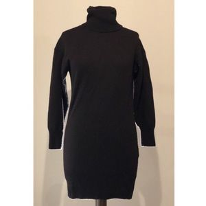 Wilfred Free for Aritzia Turtleneck Sweater Dress